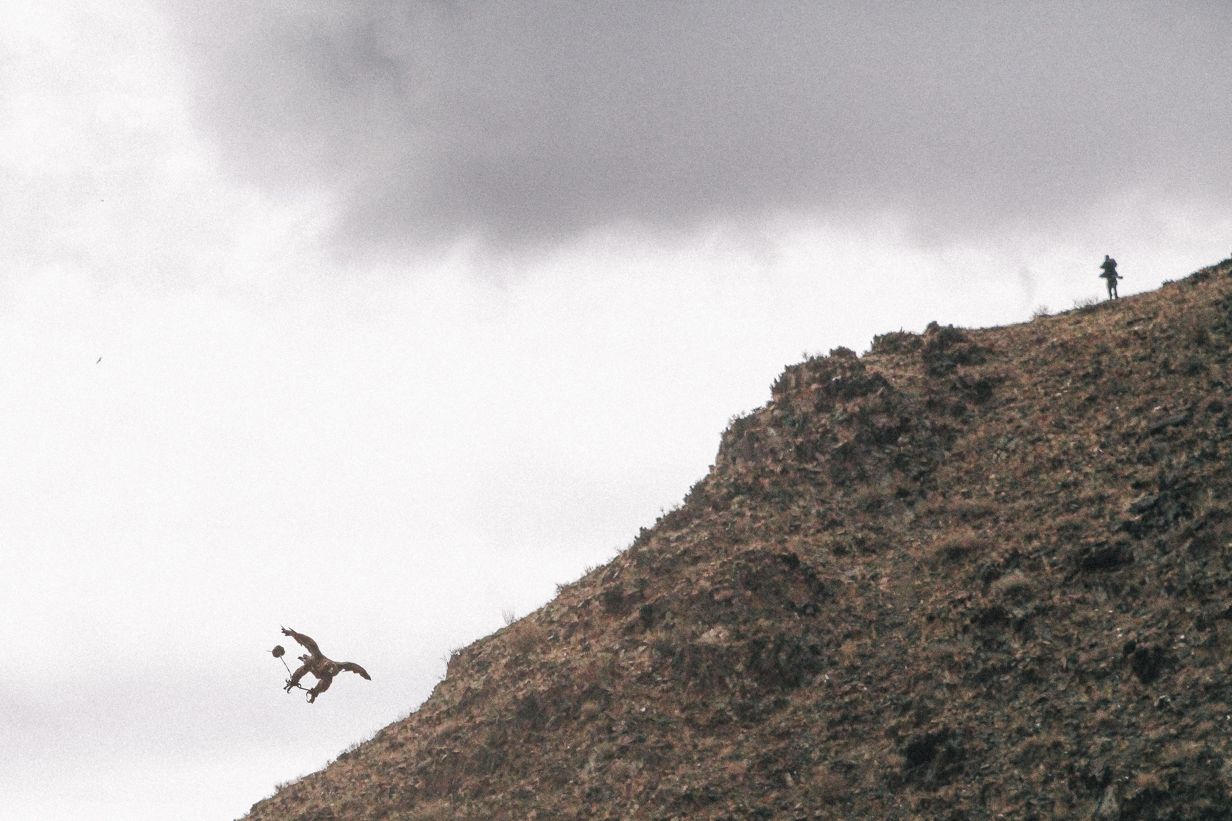 (2014) Mongolia 10 Eagle Festival