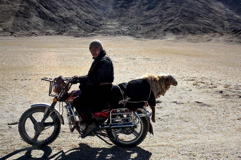 (2014) Mongolia 3