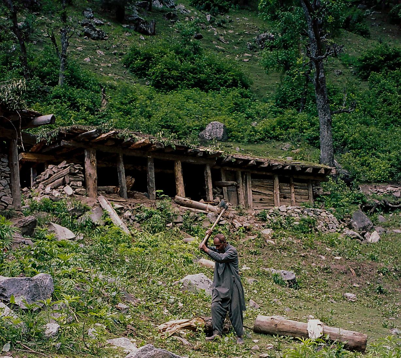 (2015) Kashmir 5