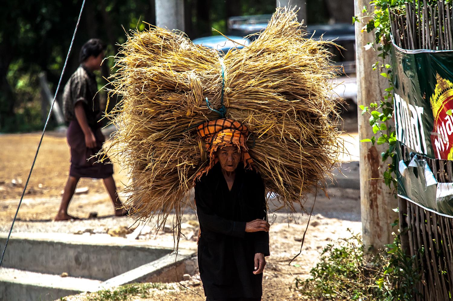 (2015) Myanmar